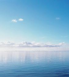 El aumento de la acidez de los océanos podría tener efectos irreversibles