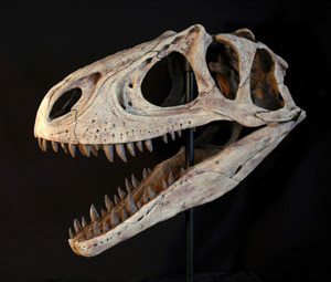 El dinosaurio Aerosteon respiraba como las aves