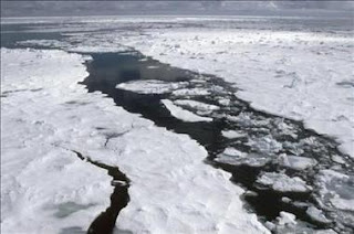 Una enorme isla de hielo se desprende de un glaciar en Groenlandia