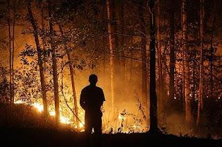 Un bombero observa las llamas de un incendio en Rusia. Efe