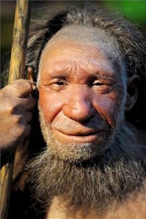 Neandertal llegó a convivir y tuvo descendientes con Homo Sapiens