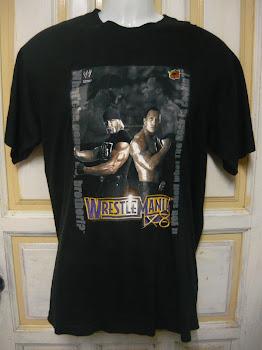 T WWE Wrestling