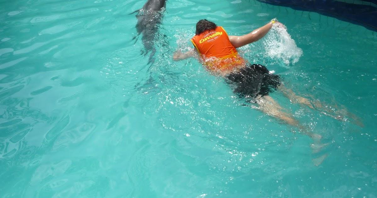 Camil en chine nager avec les dauphins lovina bali 2010 - Nager avec les dauphins en piscine ...