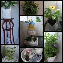 Cantinho para a prender como cuidar das plantas.