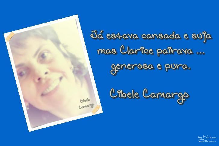 A Poética de Cibele Camargo