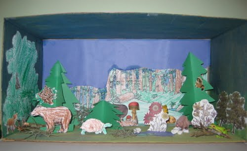 Example of Rain Forest Diorama http://nodinsnest.blogspot.com/2010/12/our-first-diorama.html