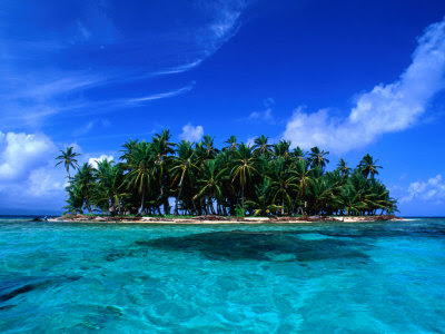 alfredo-maiquez-coconut-palm-trees-on-key-in-san-blas-islands-panama.jpg