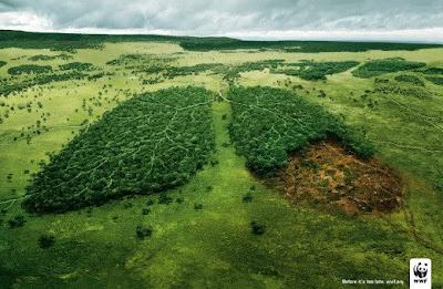 bosques ecologia wwf campañas diseño