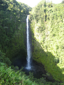 Akaka Falls (my spelling)