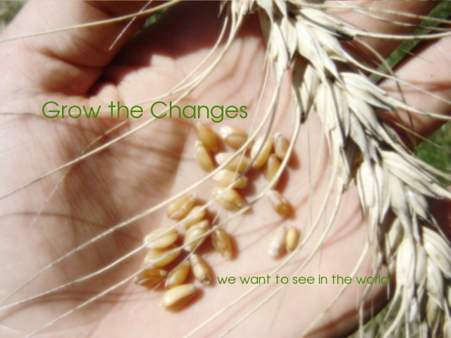 Grow the Change