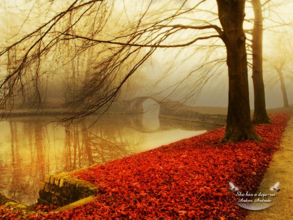 http://1.bp.blogspot.com/_D2PtMEv2wPY/TNC6lfbNh_I/AAAAAAAABfk/nHfFTOxd1kI/s1600/Autumn-wallpaper-autumn-9444951-1024-768+%5BDesktopNexus.com%5D.jpg