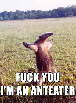 Fuck_You,_I'm_an_Anteater.jpg
