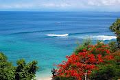 A foto que roubei...é Bali