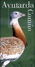 Ruta de las Aves Esteparias