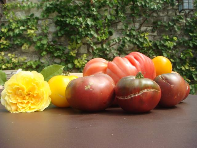 Incidently I had fresh tomatoes from my mom's garden. That was the ...
