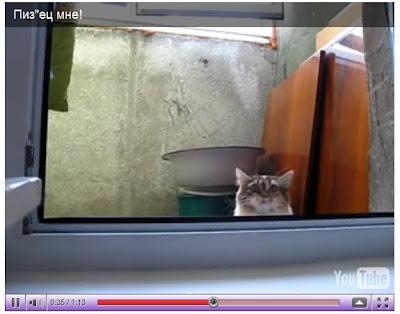 詭異躲貓貓 短片 - 俄羅斯的躲貓貓 詭異躲貓貓 短片