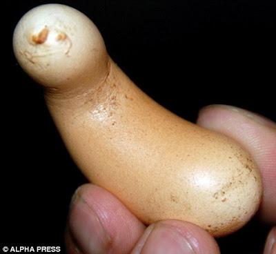 香蕉 怪蛋 - 香蕉形怪蛋