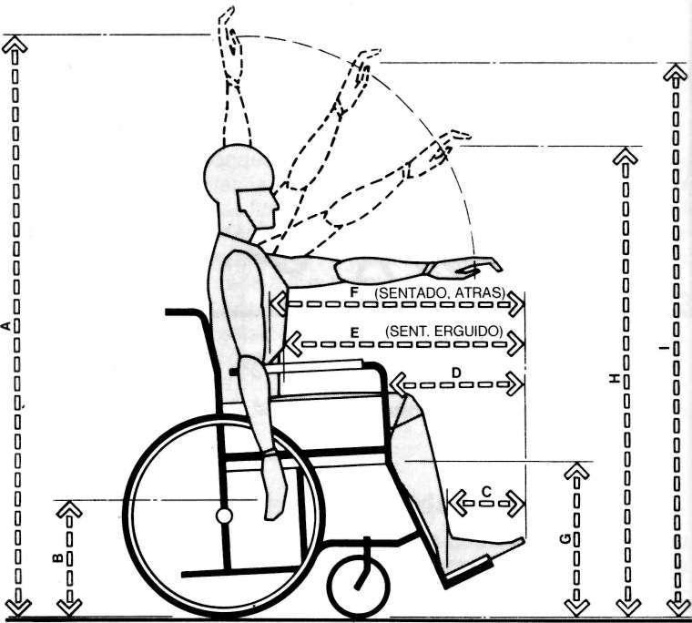 Muebles domoticos medidas para dise ar muebles a personas for Cuales son medidas antropometricas