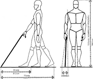 Muebles domoticos medidas para dise ar muebles a personas for Medidas ergonomicas del cuerpo humano