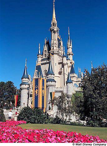 DISNEY WORLD CASTLE LOGO