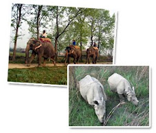 Chitwan Safari Pacakge