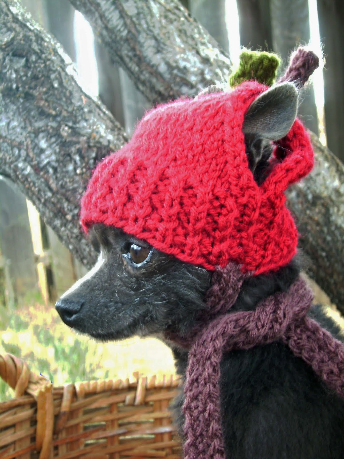 Puppy Dog Hat Knitting Pattern : Dog Gone it: Anywear hand knits for dogs