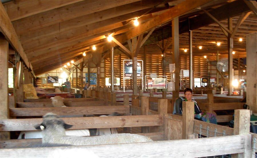 Small Animal Barn Ideas