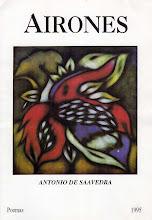 <i>Airones</i> 1995
