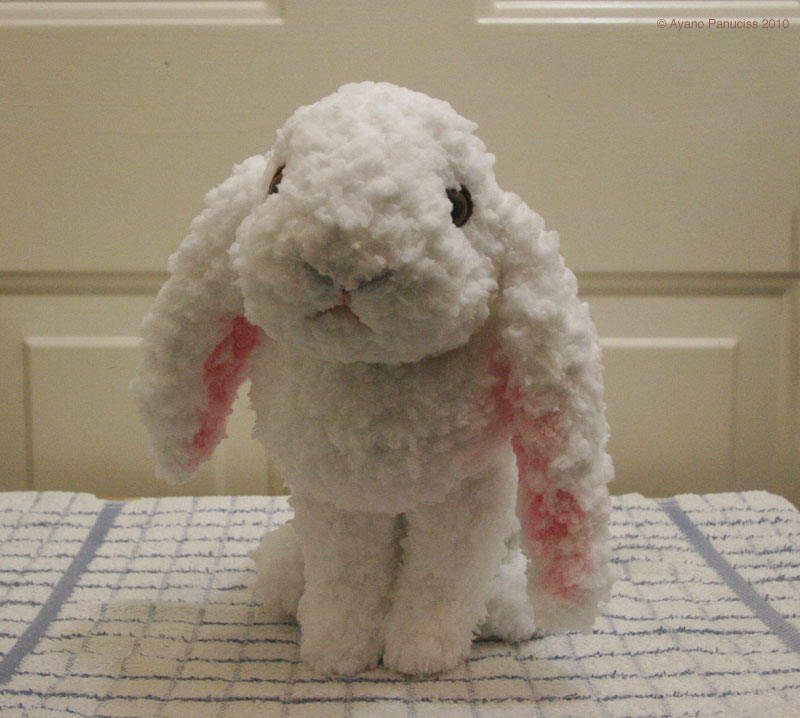 Amigurumi Rabbit : Made in Charmyheim: ????? ?????????? ?? Amigurumi Holland ...