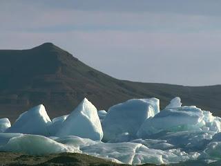 www.r10.net küresel ısınmaya hayır seo yarışması