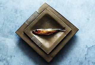 fish desging
