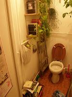 aranyér, budi, béke, fing, Klotyó, nyugalom, szarás, szeretet, sziget, toalett, wc