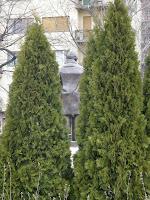 Babits Mihály, szobor, díszpolgárok, Vérmező, Bugát lépcső, statue, Budapest, I. kerület, tuja