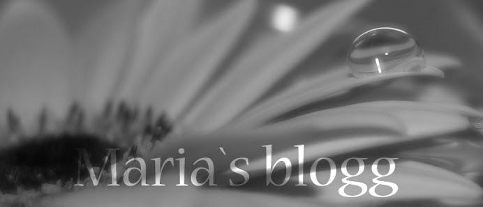 Maria`s Blogg