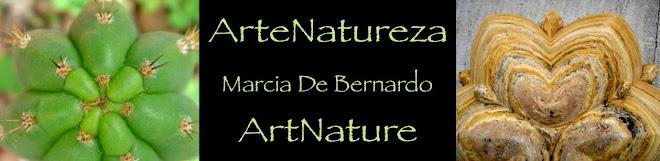 ArteNatureza - Marcia De Bernardo