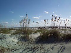 Plan ahead to attend the Congregational Retreat on Sapelo Island in the Spring 2011