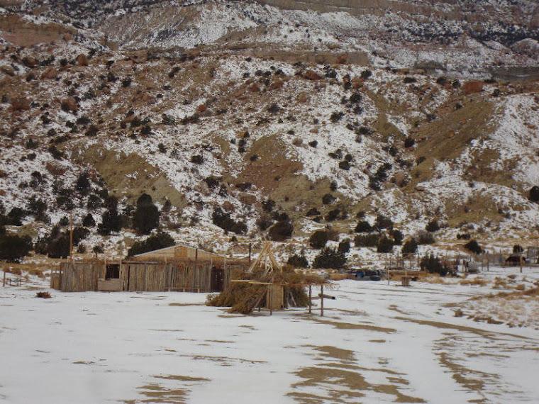 Big Shade House at Black Mesa
