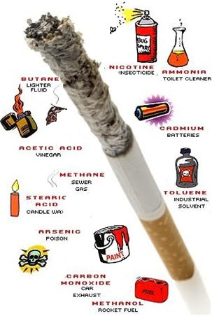 cigarette smoking and its impact on person and environment The tobacco atlas shows how even non-smokers feel the public health impacts of with smoking rates the people who use it directly, because tobacco makes it.