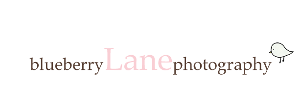 Blueberry Lane Photography ~ The Blog