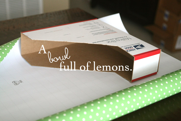 & How to make Magazine storage boxesu2026 YOURSELF! :) | A Bowl Full of Lemons