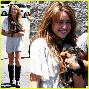 Miley Cyrus With New Puppy in the dining room's Paty