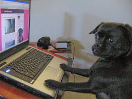 CoCo the Blogging Puggle