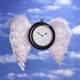 Aripi de înger cu secundele inimii bătând în locul cuvintelor