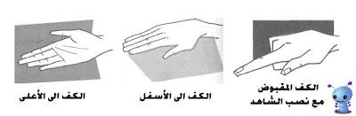 لغة الجسد Body's language بالصور قابل للتحديث