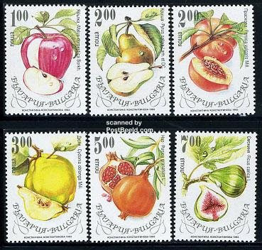 fruit stamps pictures