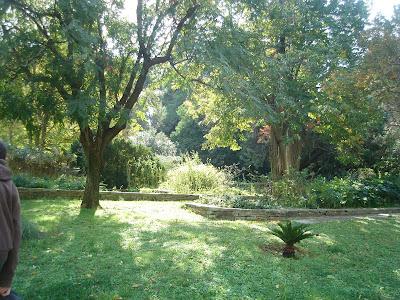 Βοτανικός κήπος αθηνών ιερά οδός 401
