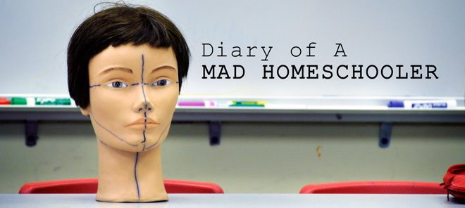 Diary of A Mad Homeschooler