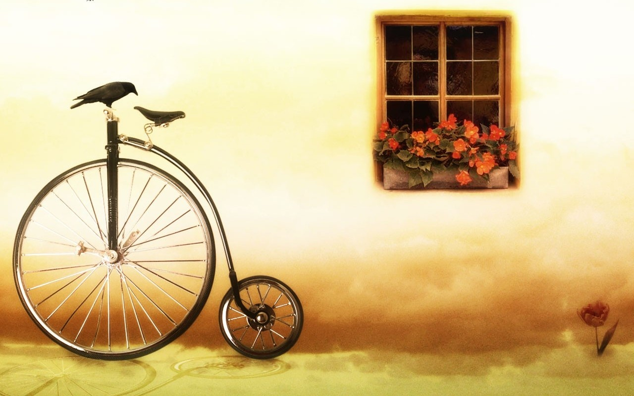 http://1.bp.blogspot.com/_DJZSrQkWQCo/TDImEo2azmI/AAAAAAAAAUc/HbEHir1KB30/s1600/Crow+on+Cycle.jpg
