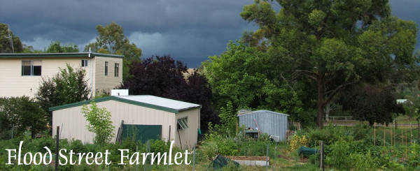 Flood Street Farmlet