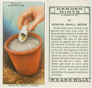 sowing small seeds garden tips
